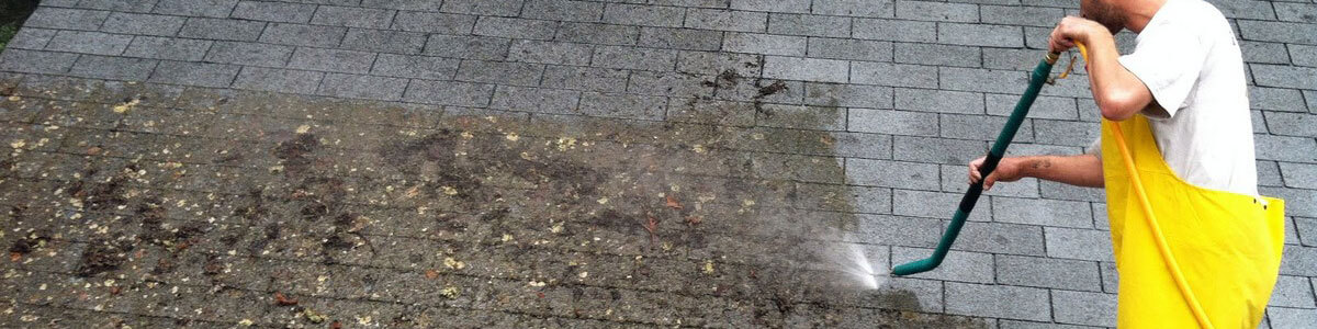 Seattle roof cleaning services